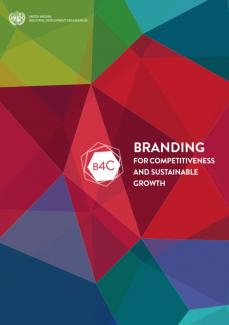 TII Module on Branding for Competitiveness and Sustainable Growth
