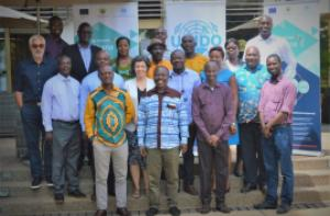 Cluster diagnostic studies training in Ghana